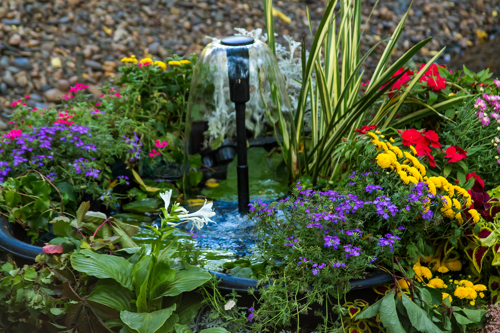 A small fountain in a pond with flowers
