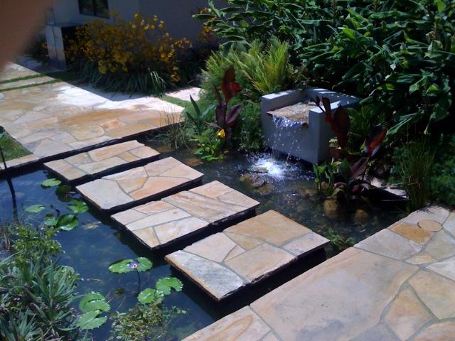 Pond Services | Pacific Pond and Aquarium