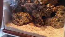 Oldbury Aquarium